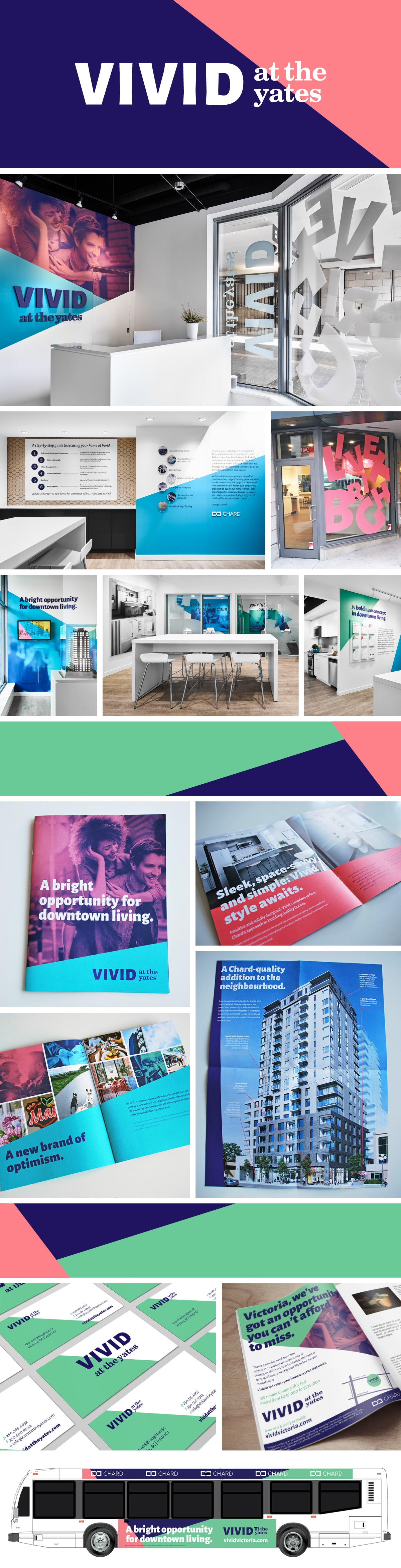 vivid graphic design portfolio